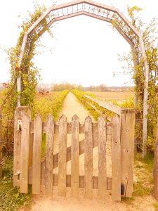 Flower Arch in Lottum